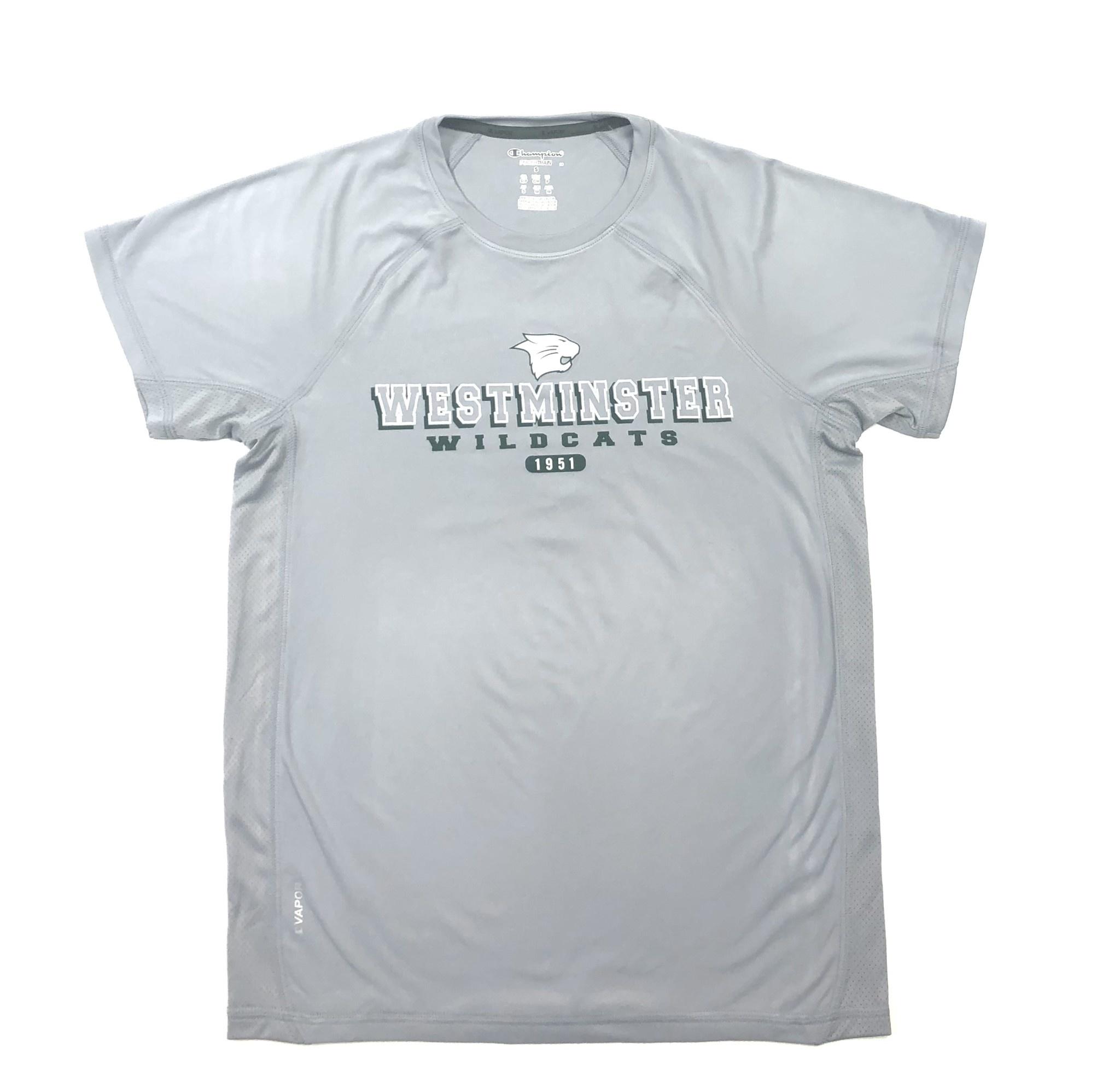 Champion T: Champion Men's Vapor Colorblock - Gray