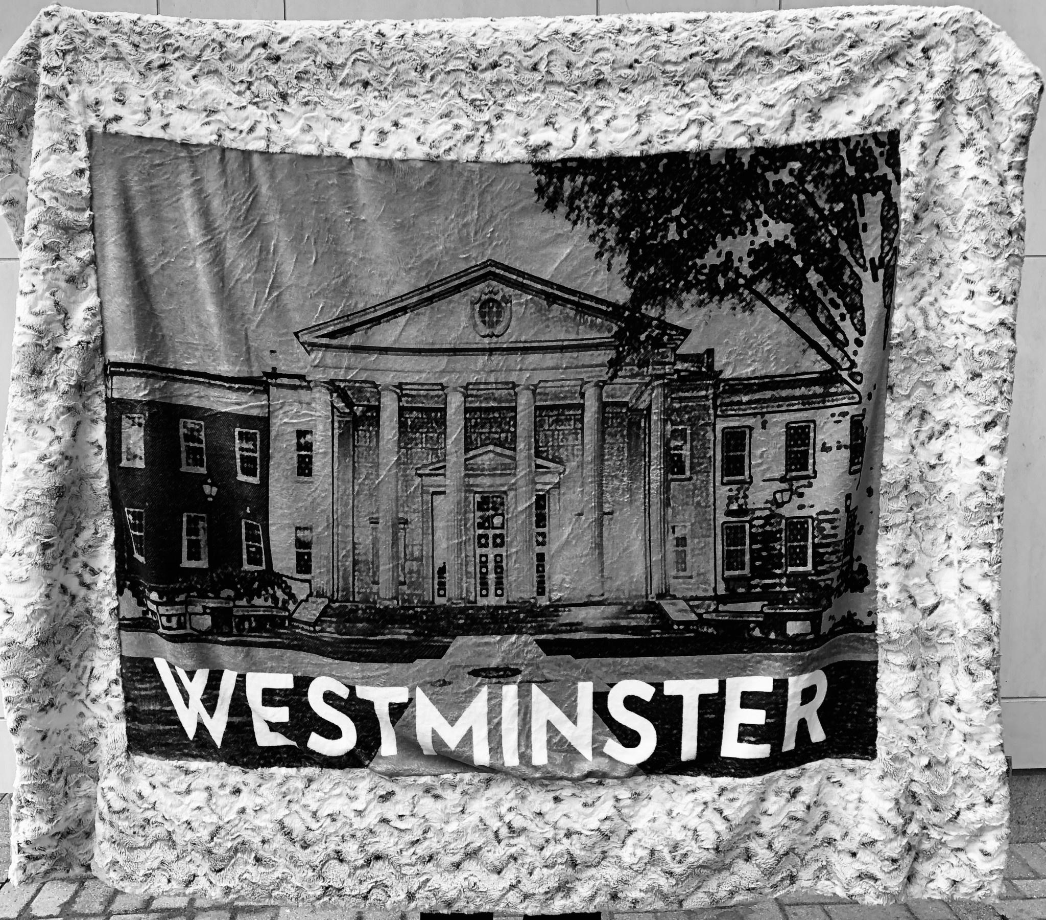 Blanket: The Picture Frame Minky Blanket - Pressly Hall