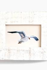 "Anne Tochka Anne Tochka - Seagull No. 6 - 2""x3"""