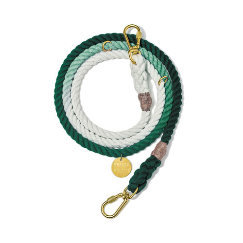 Found My Animal Rope Leash Teal Ombre