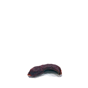 Wild Bites Venison Pepperoni Single