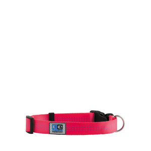 RC Pets CE Collar Utility Raspberry