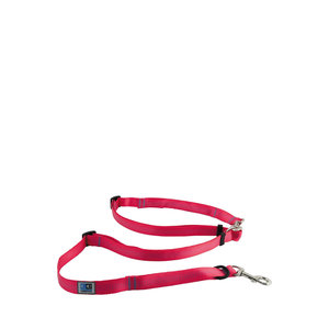 RC Pets CE Beyond Control Leash Raspberry