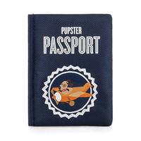 Globetrotter Passport Toy