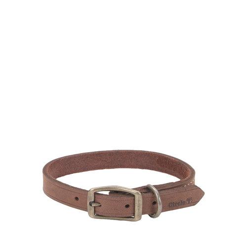 Coastal Pet Collar Leather Town Brown