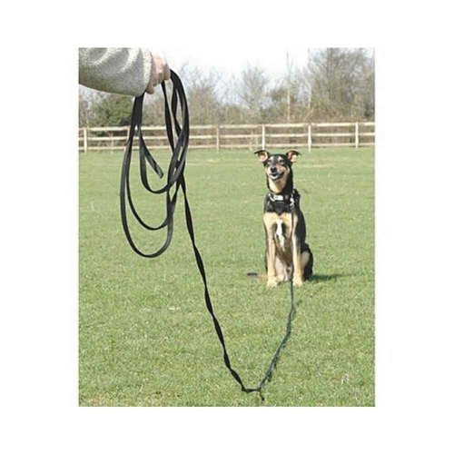 The Company of Animals CLIX Recall Leash 10m