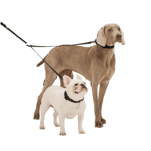 Other Sporn Double Dog Coupler Black