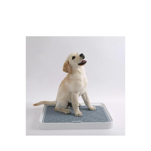 Petkit Training Tray