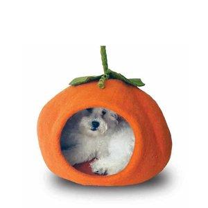 Dharma Cat Cave Pumpkin