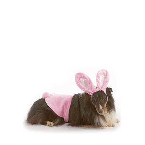 Other Halloween Costume Bunny