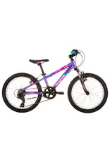 AVANTI AVANTI Spice 20 2020 Purple/Blue 20""