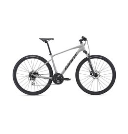 GIANT Giant Roam 3 Disc 2021 Concrete