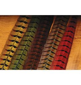 Hareline Dubbin Ringneck Pheasants Tail Feathers