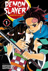 VIZ Media Demon Slayer: Kimetsu no Yaiba v01