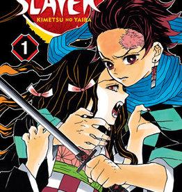 VIZ Media Demon Slayer: Kimetsu no Yaiba v01