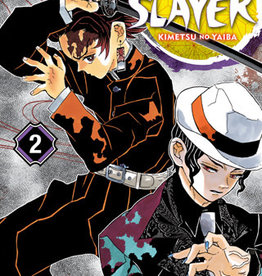 VIZ Media Demon Slayer: Kimetsu no Yaiba v02