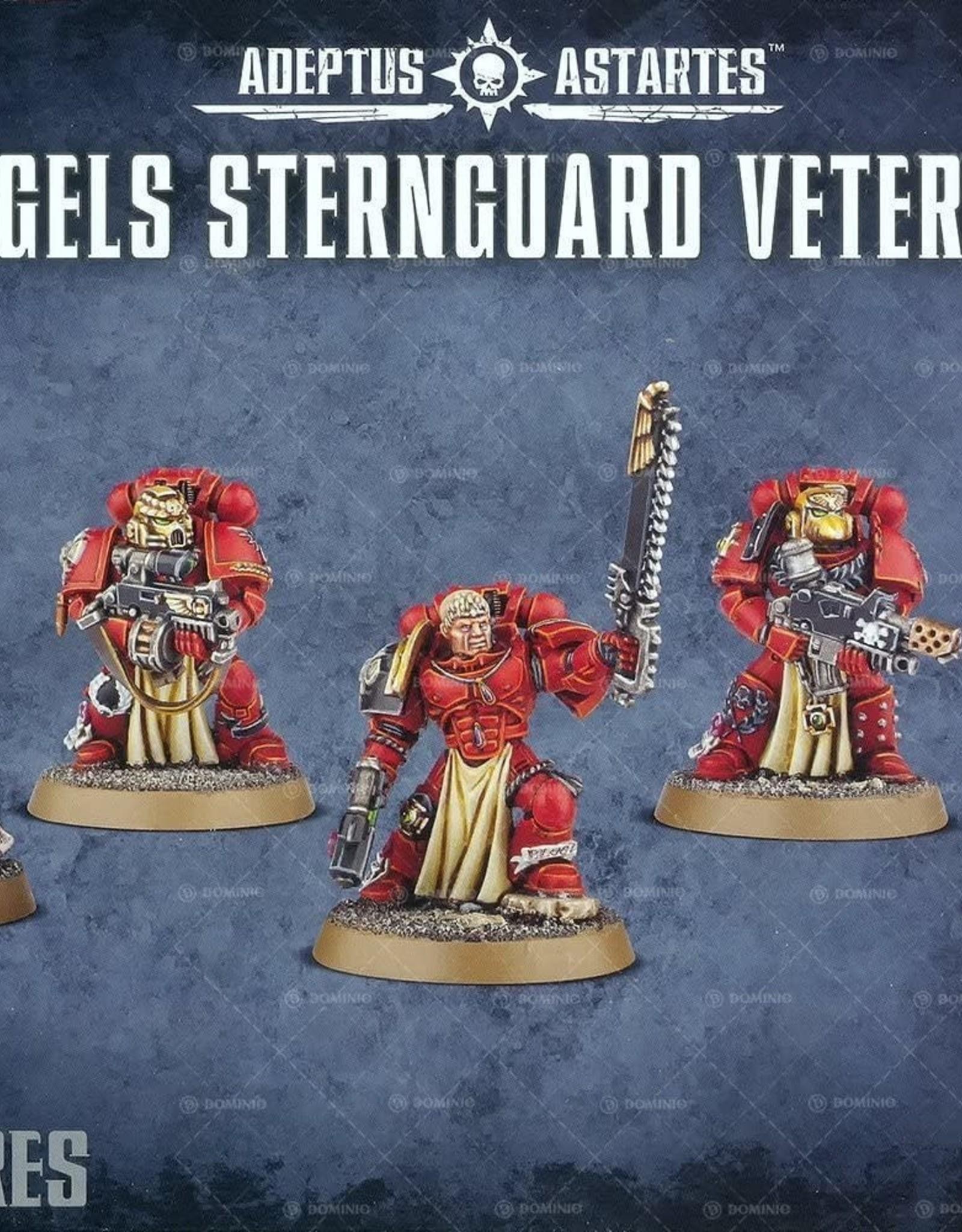 Games Workshop SM: Blood Angels Sternguard Veterans