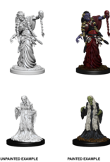 WizKids D&D Nolzur's Marvelous Miniatures: Green & Night Hag