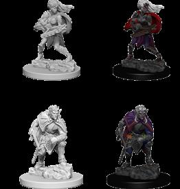 WizKids D&D Nolzur's Marvelous Miniatures: Drow