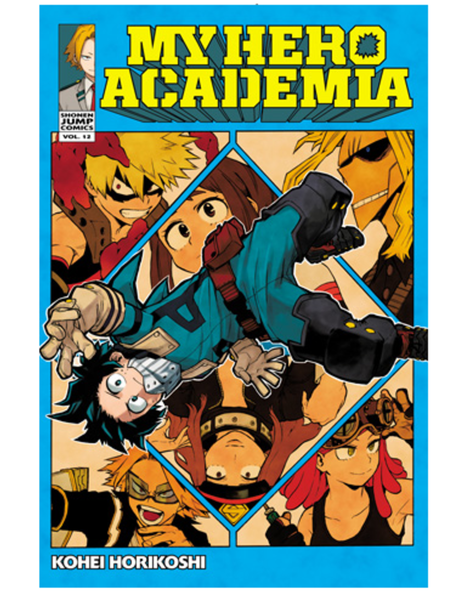 VIZ Media My Hero Academia v12
