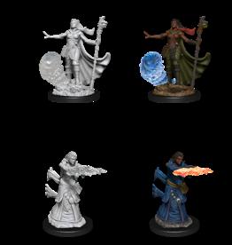 WizKids D&D Nolzur's Marvelous Miniatures: Human Female Wizard vs2