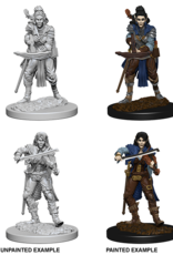 WizKids Pathfinder Battles Deep Cuts: Elf Female Bard