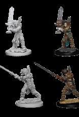 WizKids Pathfinder Battles Deep Cuts: Female Human Barbarian