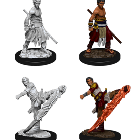 WizKids D&D Nolzur's Marvelous Miniatures: Male Half Elf Monk