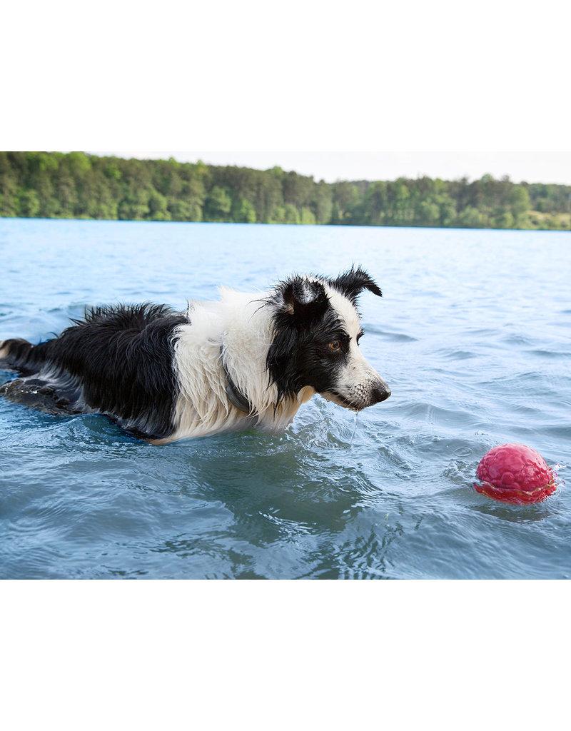 WESTPAW BOZ DOG BALL LARGE