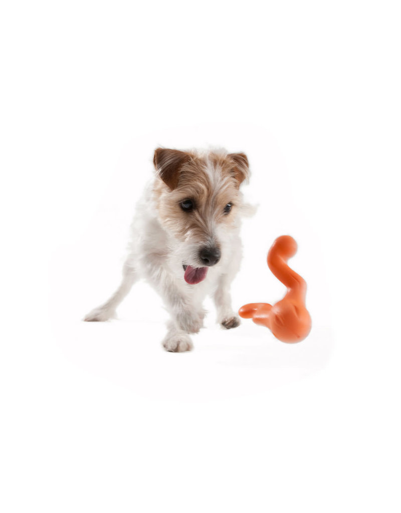 WESTPAW TIZZI DOG TOY SMALL