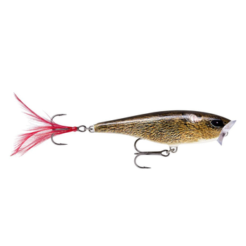 Rapala Skitter Pop. Live Field Mouse 05