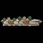 Avian-X Topflight Open Water Mallards, 6 Pack