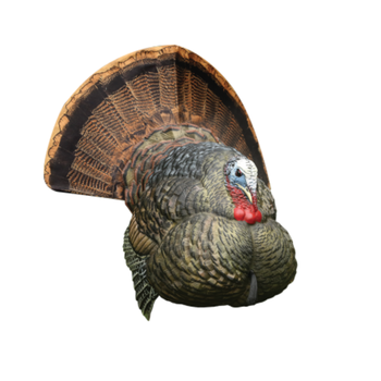 Avian-X LCD Strutter Tom Turkey Decoy