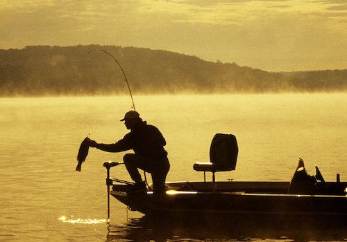 Fishing Department