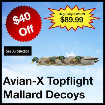 Avian-X Decoys