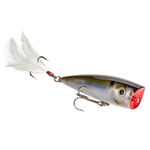"Strike King HC KVD Jr Splash Popper 2-1/4"" Natural Shad"