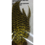 Shor Genetic Rooster Mini Pack. Hooks 2-6 Grizzly Olive