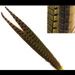 Hareline Dubbin Ringneck Pheasant Tail Feathers Yellow