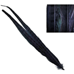 Hareline Dubbin Ringneck Pheasant Tail Feathers Black