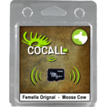 Cocall Cow Moose Card