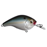 13 Fishing Jabber Jaw 60 Natty Light