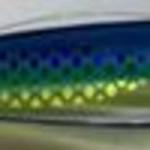 "Hot Spot Apex A6 5.5"" Colour 558R"