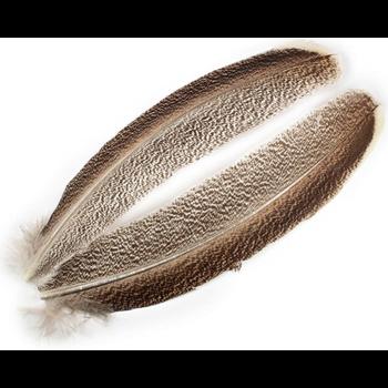 Wapsi Turkey Wing Quill Mottled. Natural Light