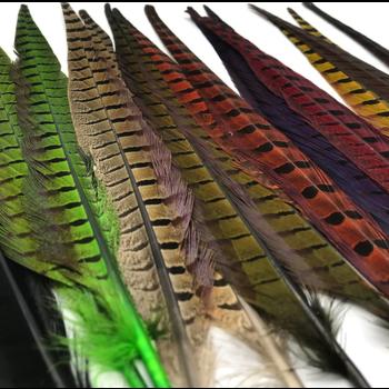 Wapsi 1 Pair Ringneck Tail Feathers