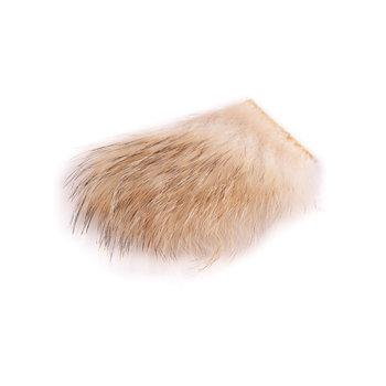 Wapsi Badger
