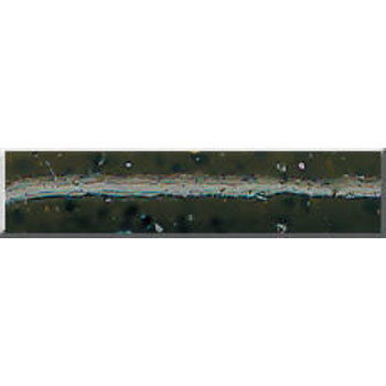 "Phenix 2.5"" Tournament Salty Tube. Green Pumpkin Black Flake (M227)"