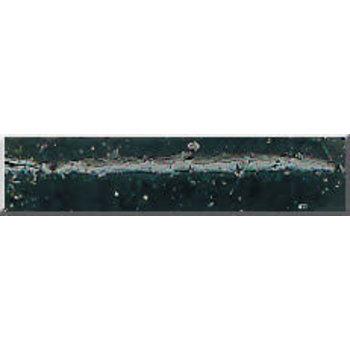 """Phenix 2.5"""" Tournament Salty Tube. Smoke Watermelon Black (M211)"""