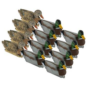 Tanglefree Refuge Mallards 8 Drakes 4 Hens