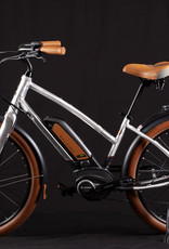 Raleigh 2019 Raleigh Electric Retroglide Royale IE Step Thru Raw Material -One Size