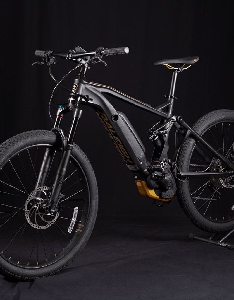 New 2020 Raleigh Lore DS iE Step Over E-Bike Size L or 19in